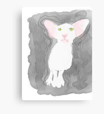 Sweet oriental shorthair cat Canvas Print