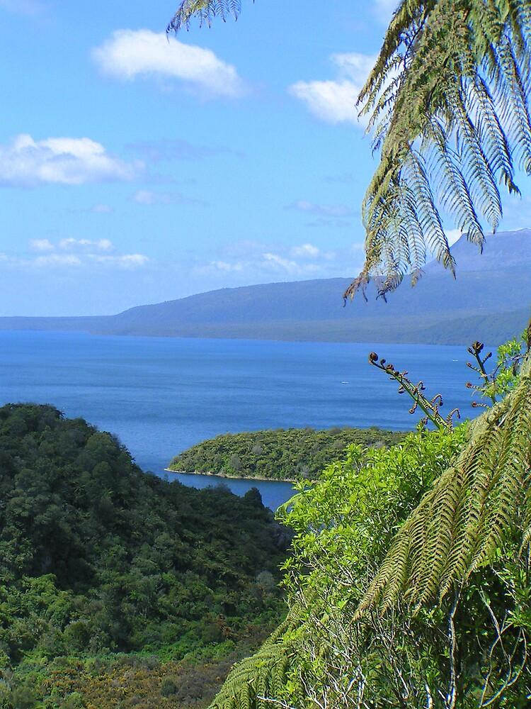 Lake Tarawera, New Zealand by ajyenney