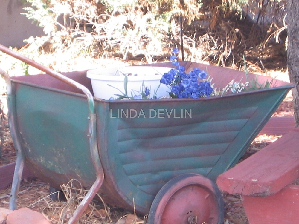 The Old Cart by LINDA DEVLIN