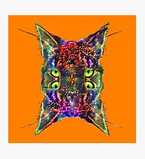 Artificial neural style Space galaxy mirror cat Photographic Print