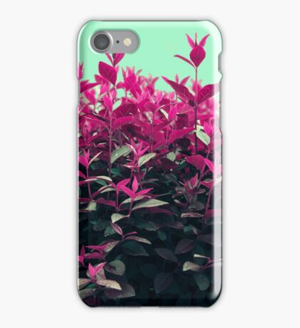 Pink Spring iPhone Case/Skin