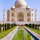 The Taj by Barbara  Brown