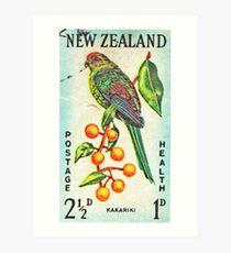 New Zealand Bird Print Art Print