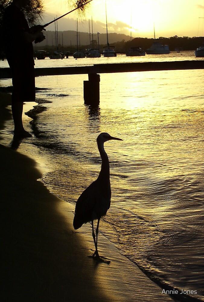 Sunset tease by Annie Jones