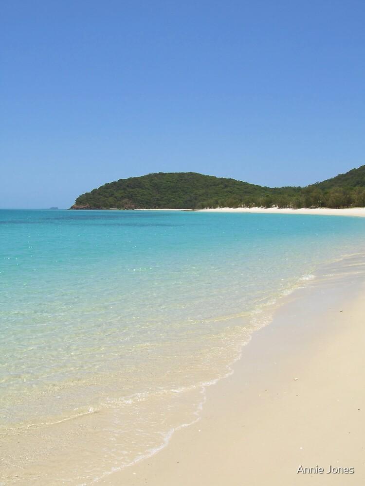 Paradise Cove by Annie Jones