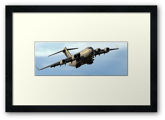 The C-17 by Lisa  Kenny