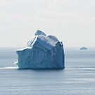 Iceberg by Colin Tobin