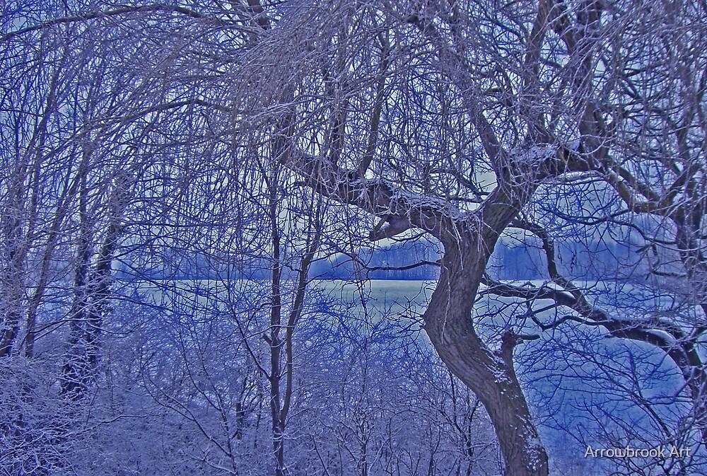Winter Handforth, Cheshire England by John Brotheridge