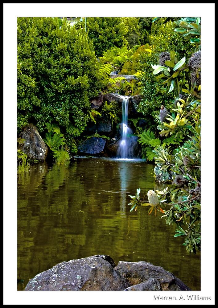 Little Waterfall by Warren. A. Williams