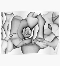 The First Flower (Tonal Drawing) Poster