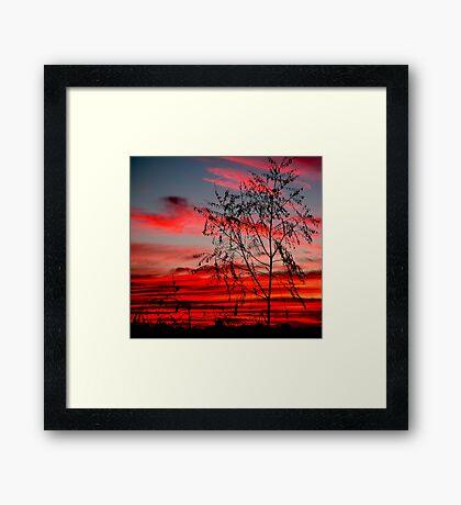 Templestowe Sunset Framed Print