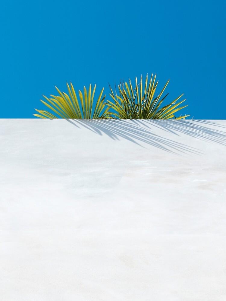 Über der tropischen Gartenmauer von josemanuelerre