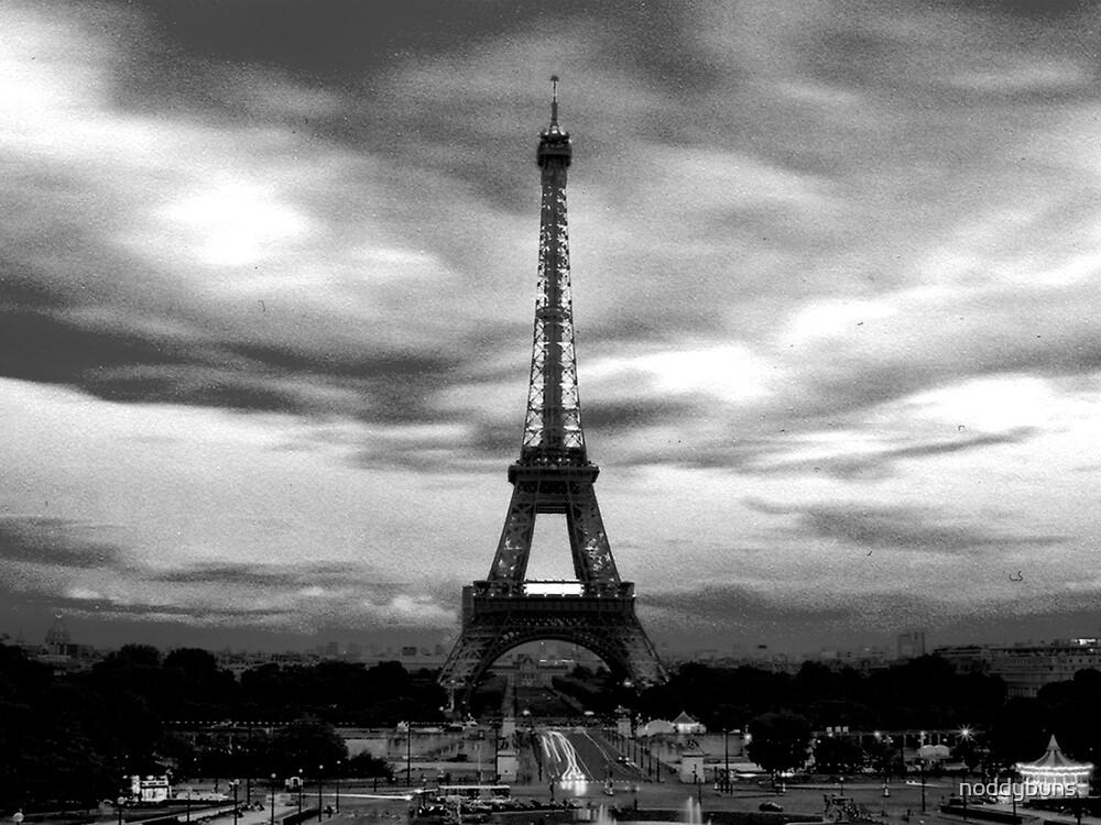 The Eiffel Tower, Paris by noddybuns