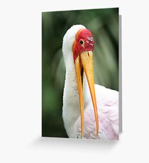 Who Me Greeting Card