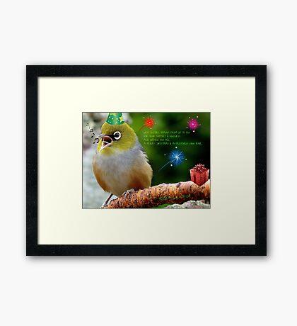 Merry Christmas Bubbler's! - Silver-Eye - NZ Framed Print