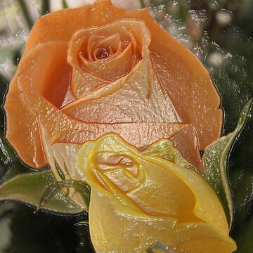 Roses Wrapped in Plastic by Rpnzle