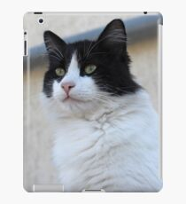 Tuxedo Cat Portrait iPad Case/Skin