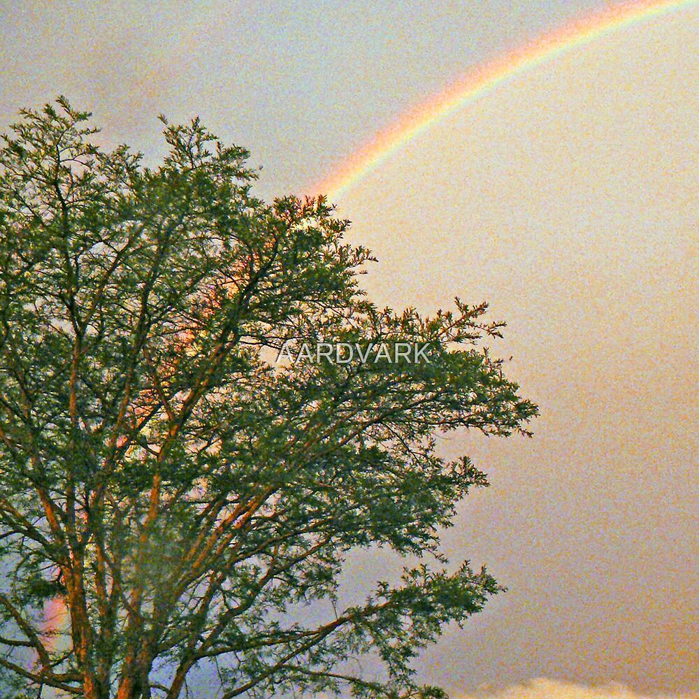 """Rainbow Over """"Jock Of The Bushveld Huts"""" by AARDVARK"""