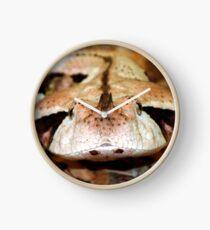 Gaboon Viper Clock