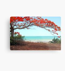 Flame Tree Metal Print