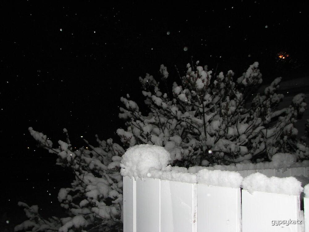 fencepost by gypsykatz