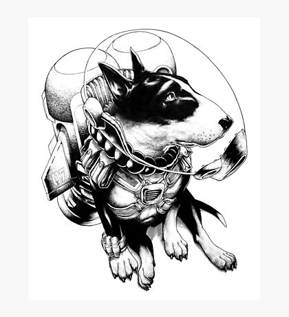 Jetpack Dog | Curtiss Photographic Print