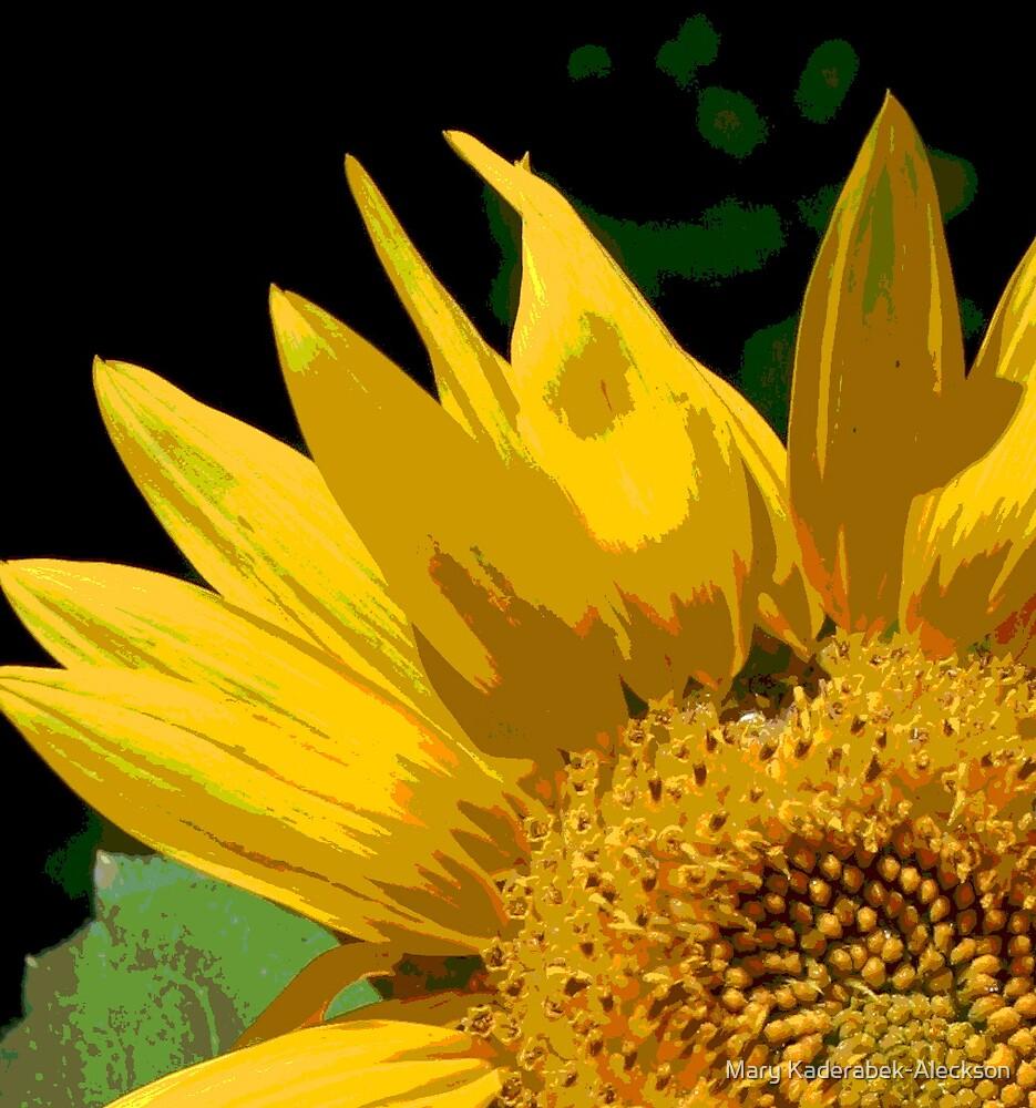 Sun(flower) Rising by Mary Kaderabek-Aleckson