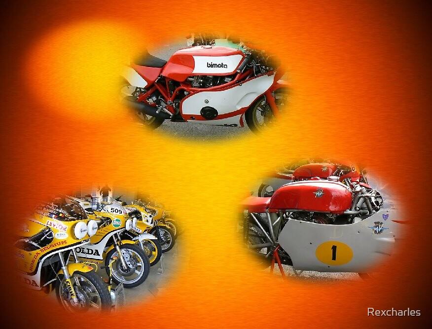 RACING MOTORCYCLES IN ART  by Rexcharles