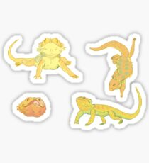 bearded dragons  Sticker