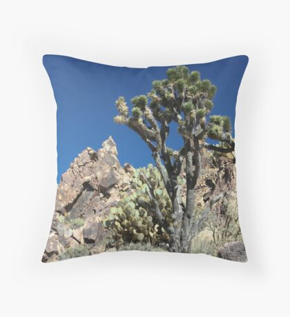 Kessler Peak, CA Throw Pillow