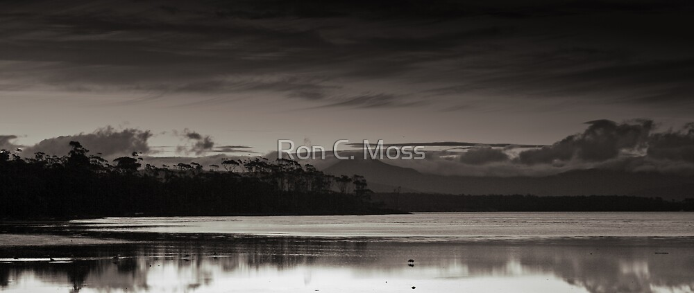 Day's End by Ron C. Moss