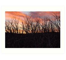 Wallace Hut Sun Set Art Print