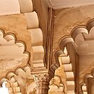 Agra Arches by Barbara  Brown