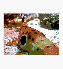 Deep Blue Sea Photographic Print