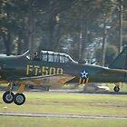 Texan Landing, Nowra Airshow, Australia 2007 by muz2142