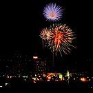 Reno Nevada Fireworks by the57man