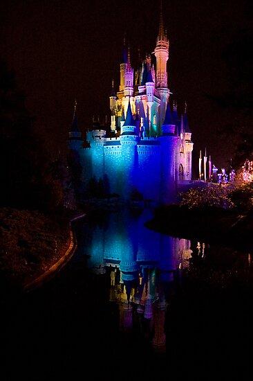 Magic Kingdom Reflections by Tim Ray