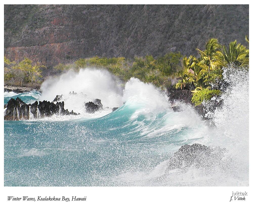 Winter Waves, Kealakekua Bay, Hawaii by jvittek