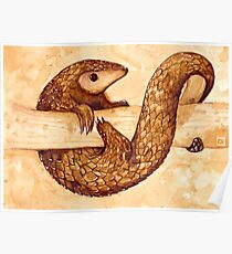 Tea and Coffee Pangolin Poster