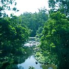 Tranquil Summer River by Stephen  Shelley