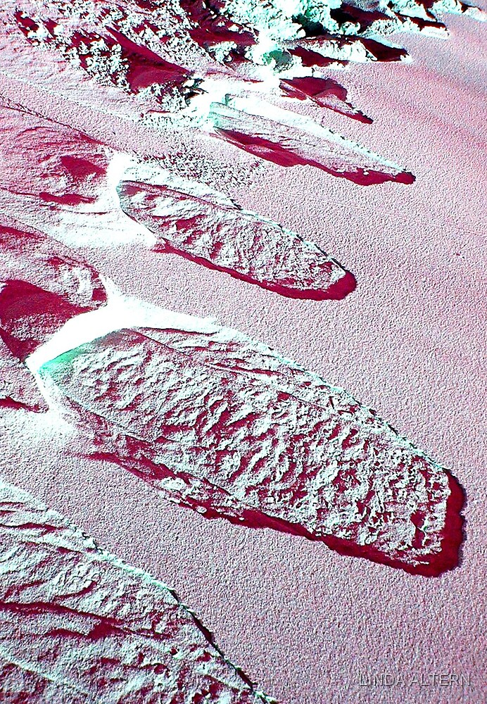 LOST FOOTPRINTS IN THE SAND by LINDA ALTERN
