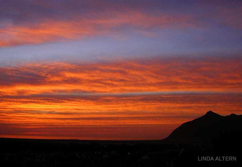 FIRE IN THE SKY by LINDA ALTERN