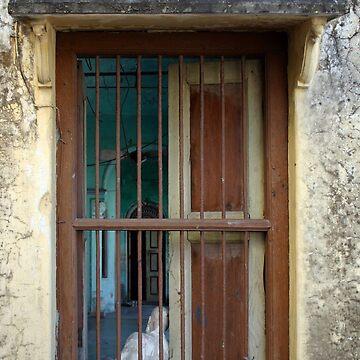 Buddha Window by lushmint