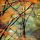 Autumn Colour by Kenart
