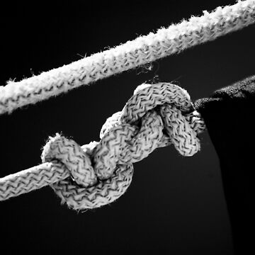 the Knot of live by Creando