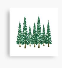Into the Pines Canvas Print