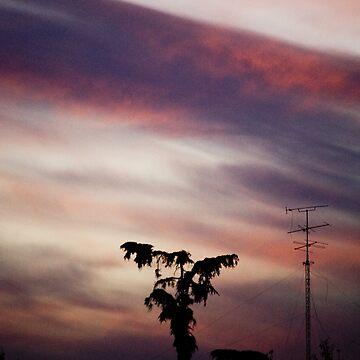 tree2 by Creando