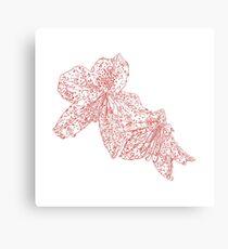 azalea drawing, red Canvas Print
