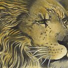 ACEO Lord of The Pride - African Lion by John Houle
