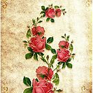 Roses by flashcompact